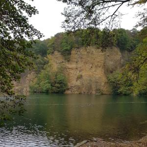 Bonn  Dornheckensee