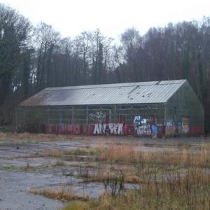 Dollern - altes Gewächshaus